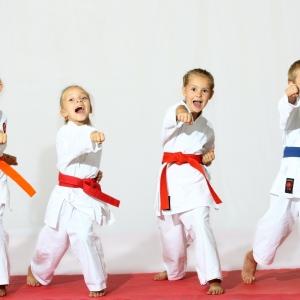 detsekcii_karate