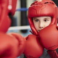 detsekcii_boxing